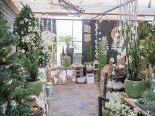 nieuwe-winkelindeling-tuincentrum-bloemsierkunst-odink-1523
