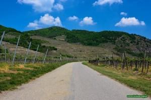 Dolina Wachau - spacer rowerowy
