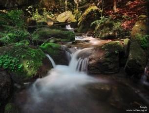 Reszowskie wodospady - na szlaku