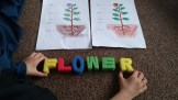 Students learning about flowers!