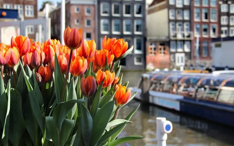 Events calendar Amsterdam