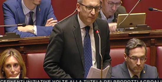 """PATASSINI """"Made in Italy da tutelare, la dieta mediterranea è salubre perché varia ed equilibrata"""""""