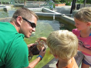 Kids petting turtles at the Turtle Farm, Grand Cayman, Cayman Islands