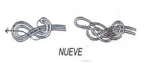 nudo nueve