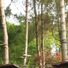 Costa Brava Parc d'Aventura Platja d'Aro