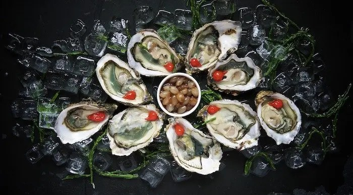 Oysters at Shuking' Shack Oyster Bar