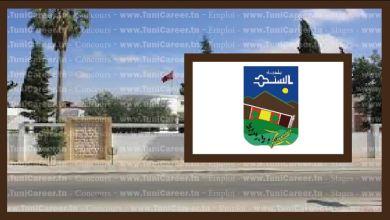 P0238 مناظرة انتداب بلدية السند