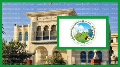 P0245 انتدابات في بلدية العالية