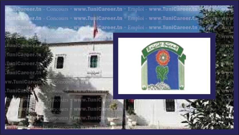 P0249 مناظرة انتداب مهندس في بلدية الجديدة