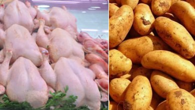 Photo of وزارة التجارة تحدّد تسعيرة مادة البطاطا ومنتوجات الدواجن بداية من 01 سبتمبر 2021