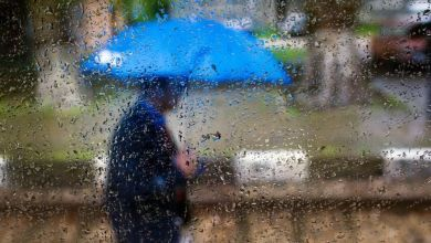 Photo of أمطار متفرقة مع استقرار في درجات الحرارة – تي آن ميديا