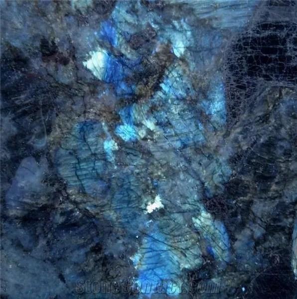 labradore bleuté