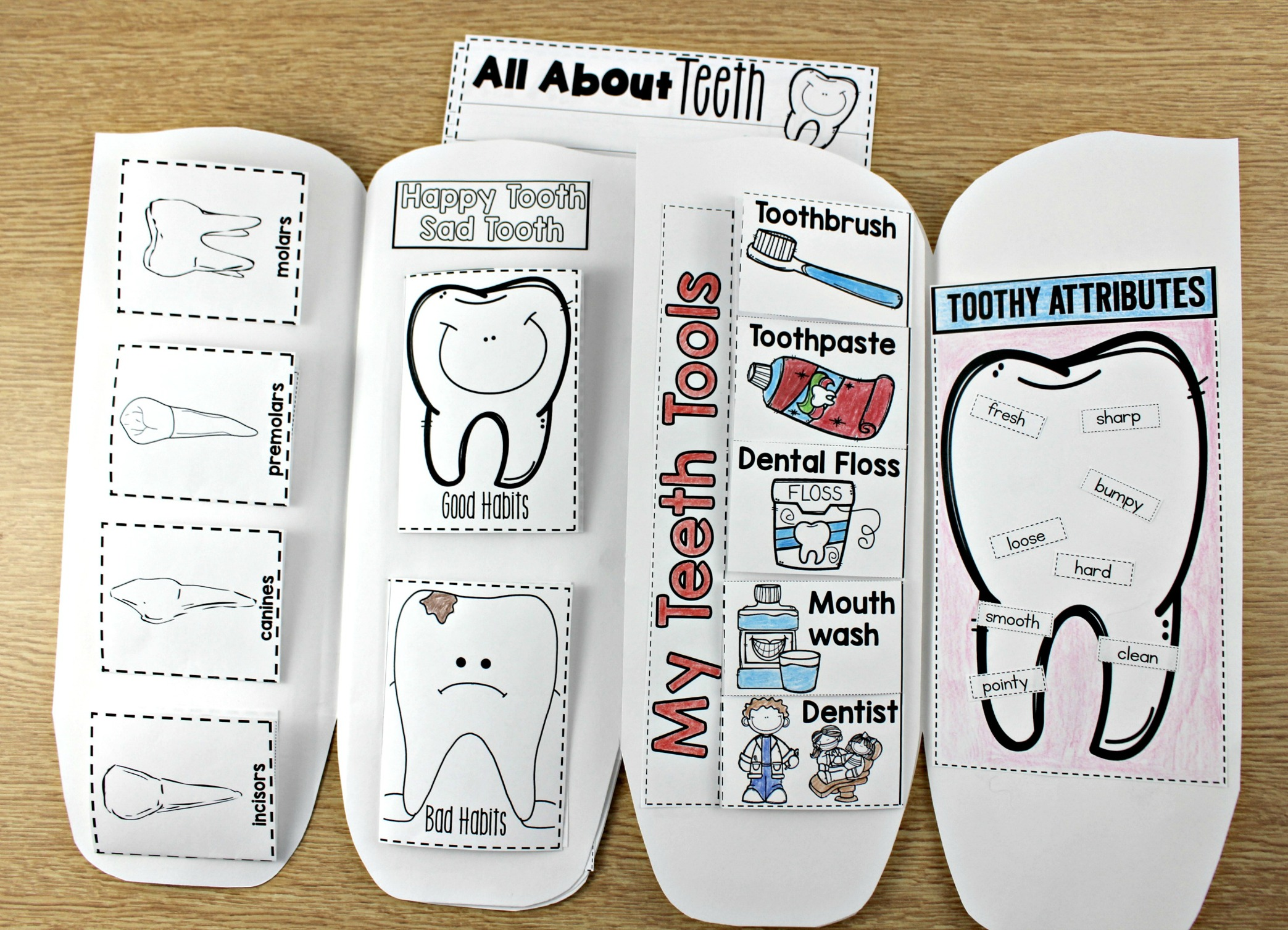 Dental Health Tooth Book