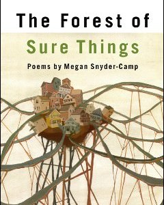 The Forest of Sure Things by Megan Snyder-Camp