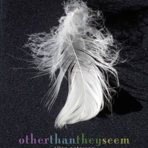Other Than They Seem by Allan Peterson