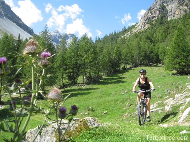 val mora mountain bike