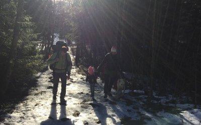 Vinterteltur til Lauvtjern i Østmarka
