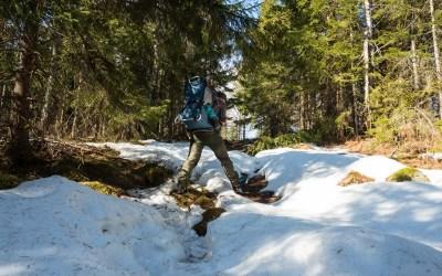 Heldags vandring gjennom Kilsbergen