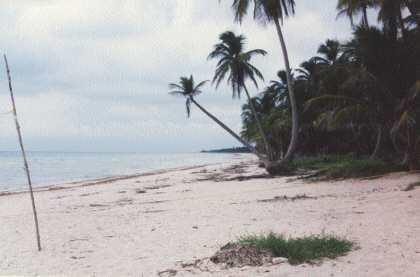 playa caracol, campehe