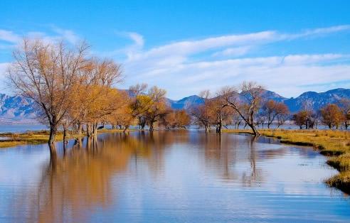 La Ruta de los Menonitas, Durango