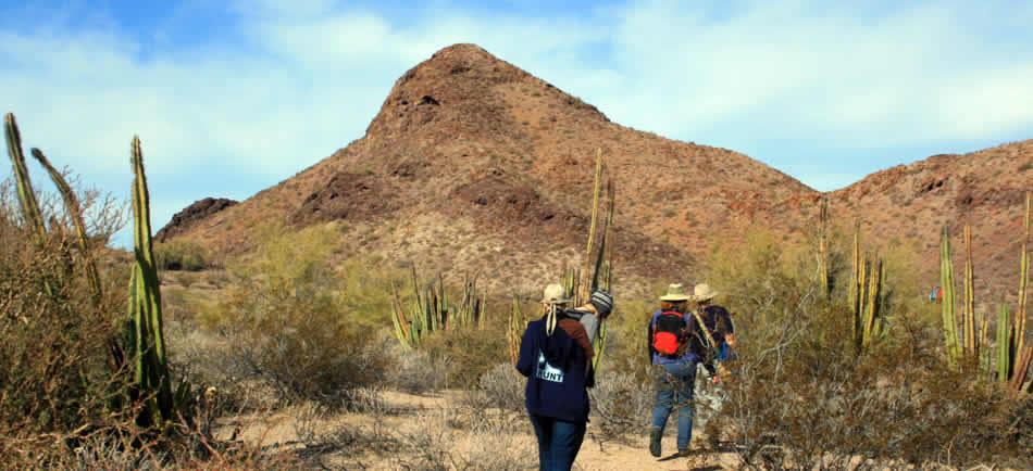Ecoturismo en Sonora
