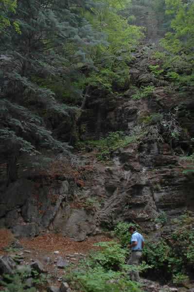 Sierra de Ajos-Bavispe