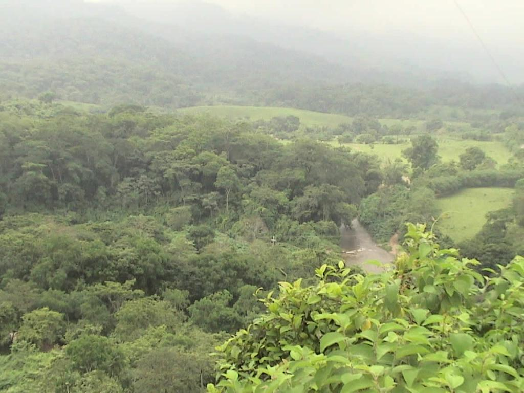 Los Chimalapas