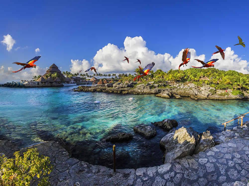 Xcaret: un Paraíso Acuático