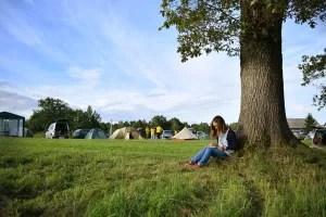 Saltum Strand Camping vil opføre 80 sommerhuse på campingpladsens areal. (Arkivfoto)
