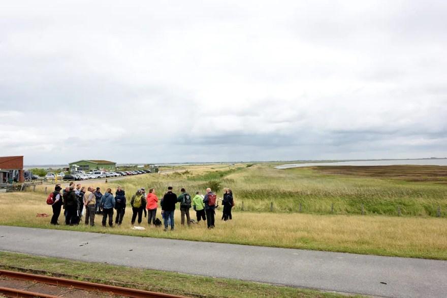 Den skriftlige og praktiske prøve foregik i Breklum nord for Husum og i naturområdet Beltringharder Koog, hvor der var rige muligheder for at iagttage flere af de op mod 40 fuglearter, der bruger Vadehavet som en livsvigtig station på deres flere tusinde kilometer lange træk. (PR-foto)