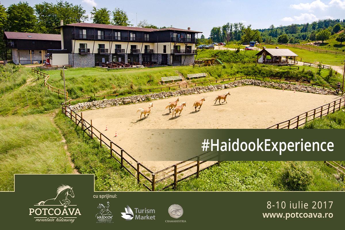 afis Haidook Experience 2017