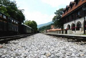 11 - Zlatibor e dintorni