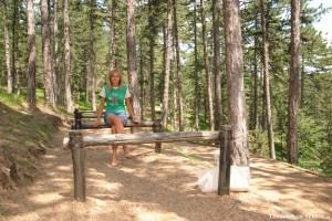 17 - Zlatibor e dintorni - Parco Nazionale di Tara