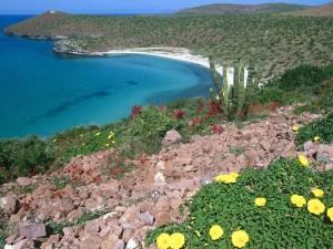 Turismo médico en Baja California genera $86 millones