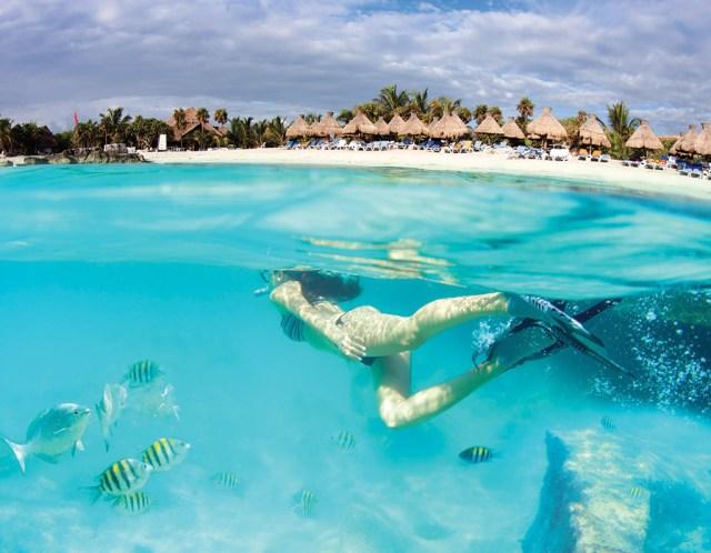 Riviera Maya   México   Turismo   Excursiones e información Riviera Maya