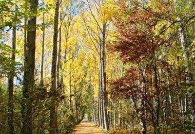 Rascafría y el Parque Natural de Peñalara
