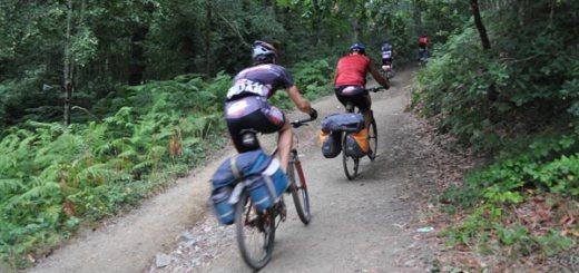 Quebrantahuesos a la conquista de las altas cumbres pirenaicas