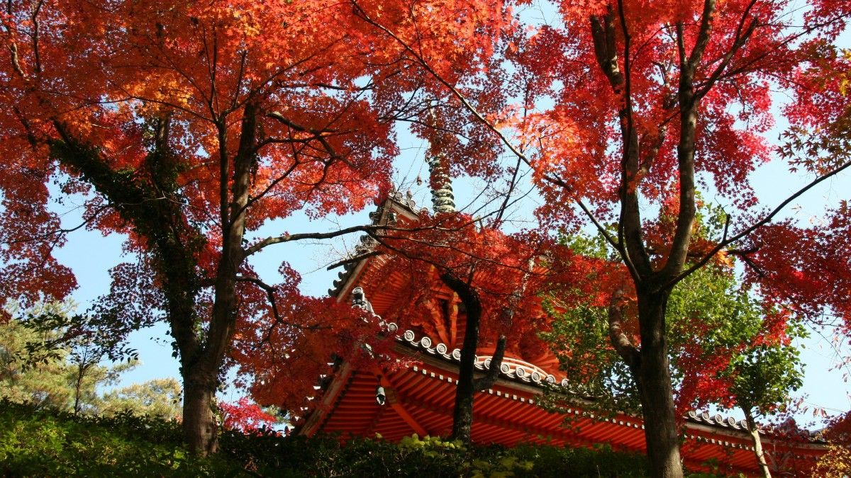 Templo Mitaki-dera en Japón