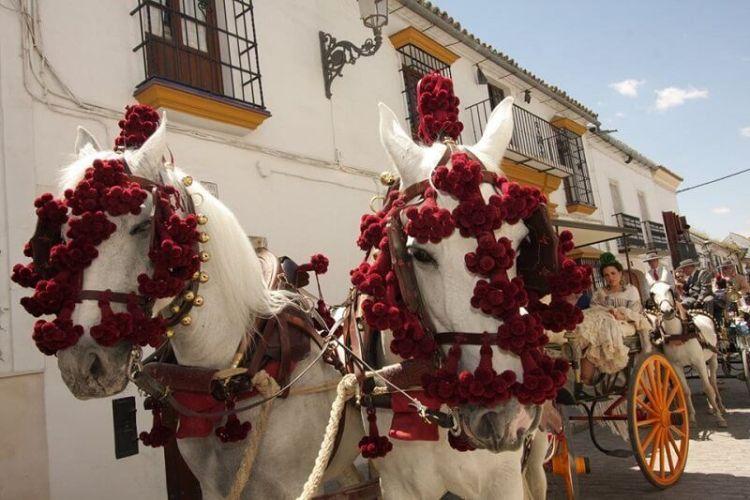Andalucía y Caminos de Pasión