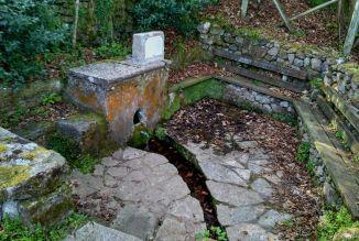 Fuente en Abéu, El Reguetu.