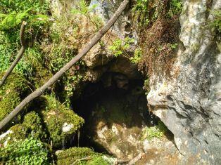 Entrada Cova Rosa, Ribadesella