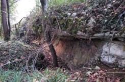 Galería Bosque Pontiga. Vega los Caseros