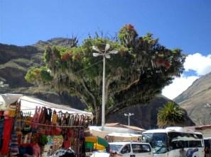 %name Pisaq de tirar o fôlego: uma prévia para Machu Picchu