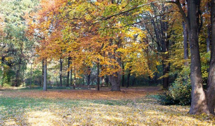 Tiergarten em Berlim