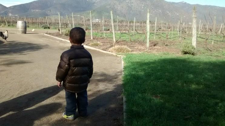 %name Chile: O que fazer em Santiago com crianças