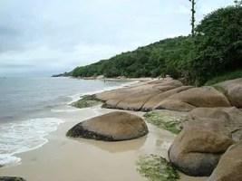 Praia da Daniela By Mauro Soares   panoramio   Mauro Soares 1 Todas as praias de Florianópolis