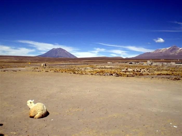Colca trip 06ago2011 16 8on8: A beleza do Vale do Colca, no Peru, em 8 fotos