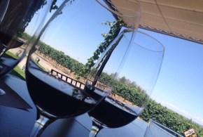 7 motivos para ir a Mendoza – Argentina
