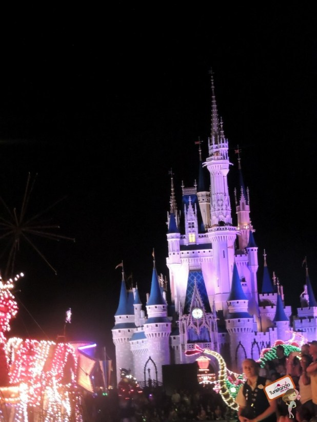 Wishes of Nighttime Spectacular