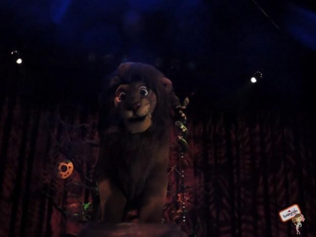 O Rei Leão!!!